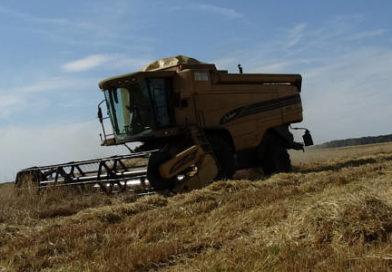 Rolnictwo ma szansę wyjść z kryzysu obronną ręką
